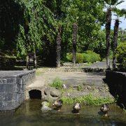 Photo trip しろいし いろいろ ×【益岡公園】