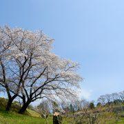 Photo trip しろいし いろいろ ×【寿山】