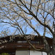 Photo trip しろいし いろいろ ×【弥治郎こけし村】  2017.4.20