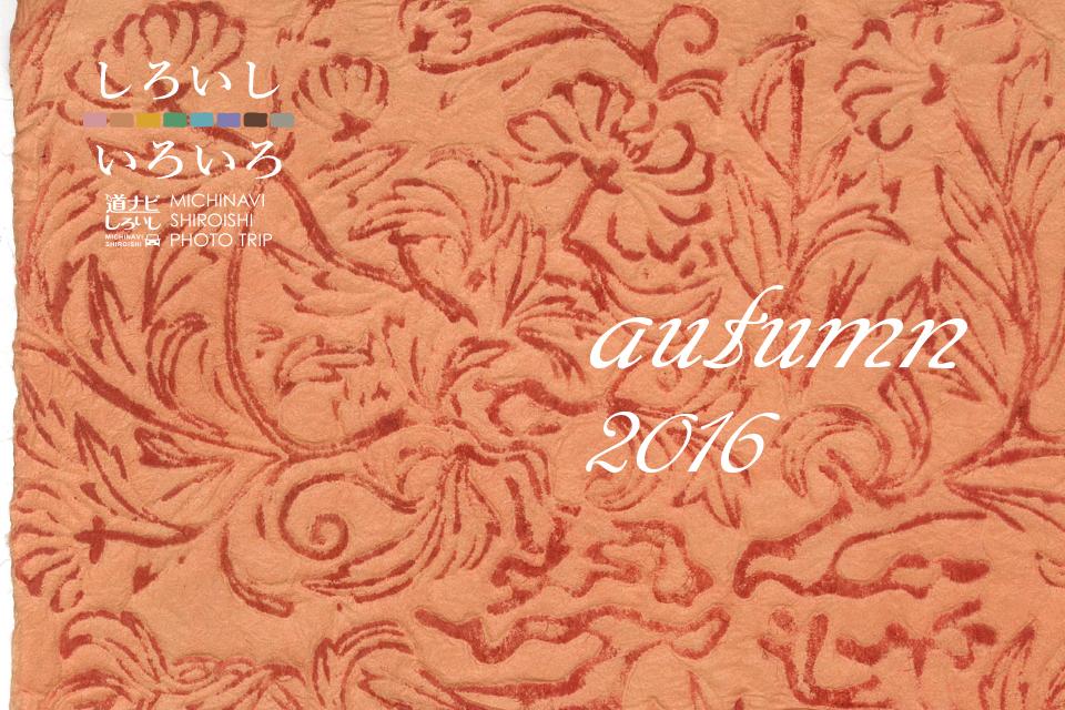 1018_kamiko_autumn