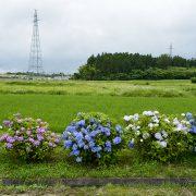 Photo trip しろいし いろいろ ×【福岡蔵本】